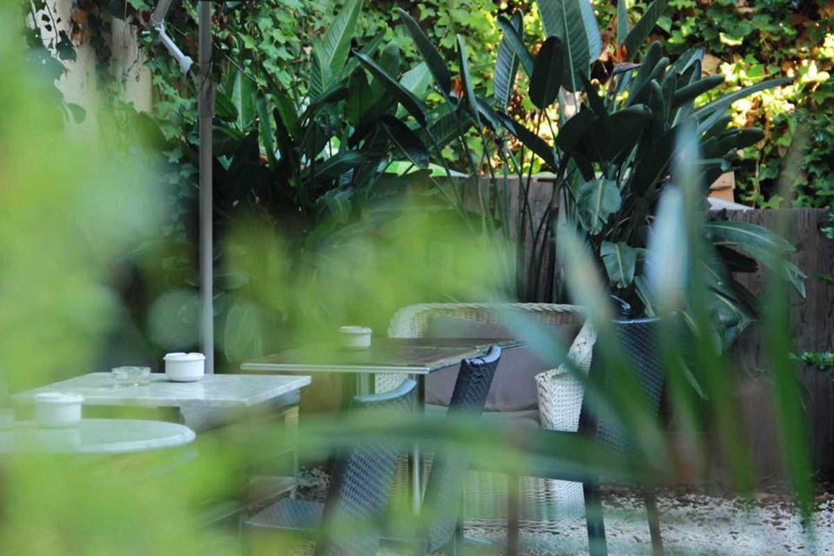 botanic bar cafe