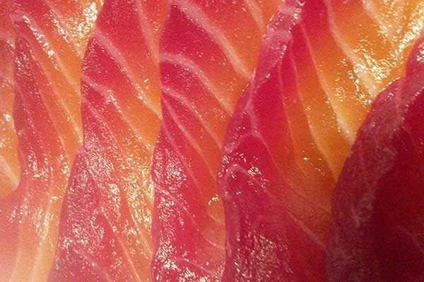 brittas salmon