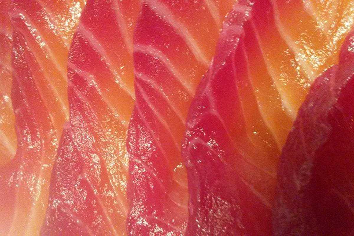 brittas salmon@2x