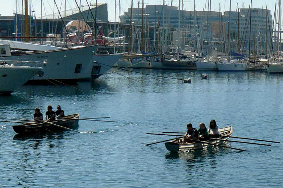 currach regatta