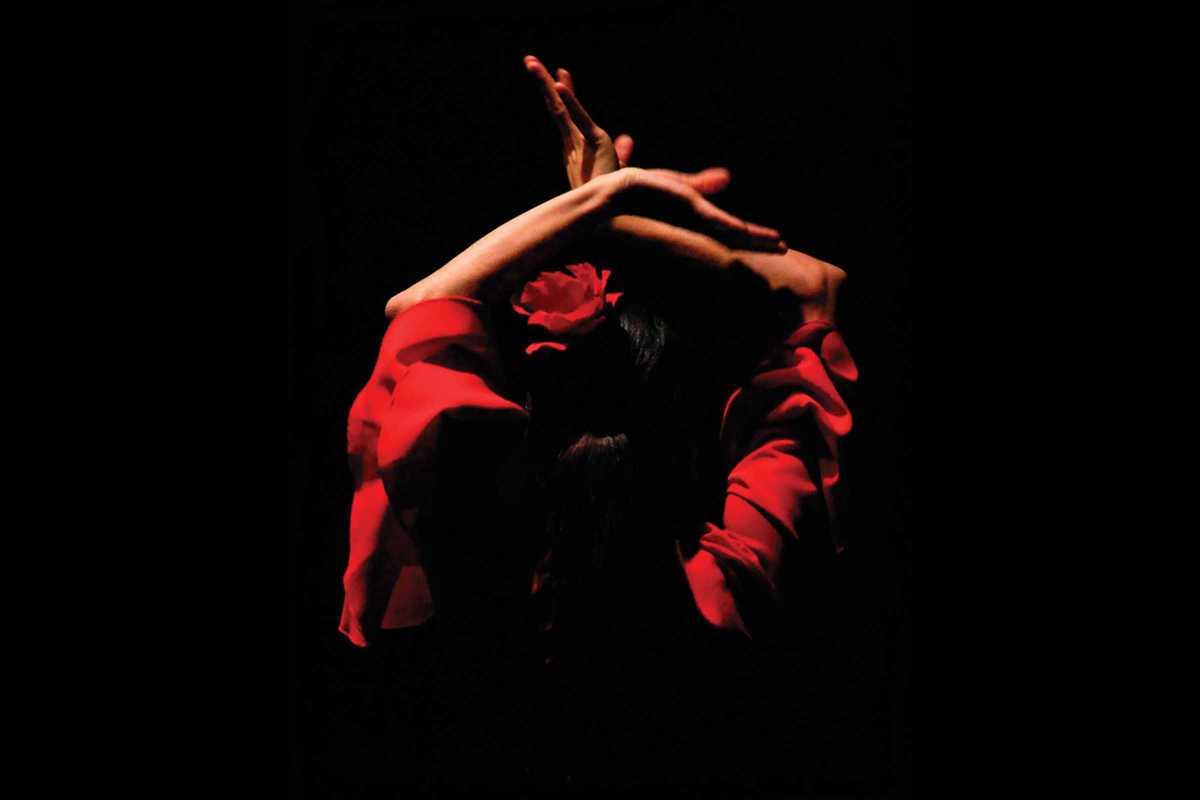 flamenco trio