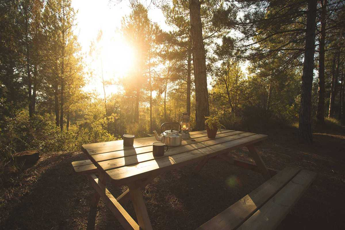 forest-days-glamping-picnic-table