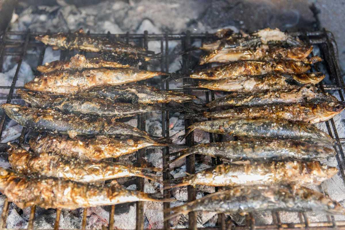 mercat de la terra sardines