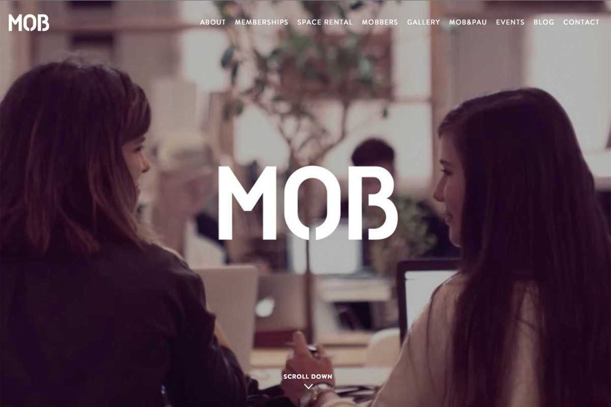 mob website