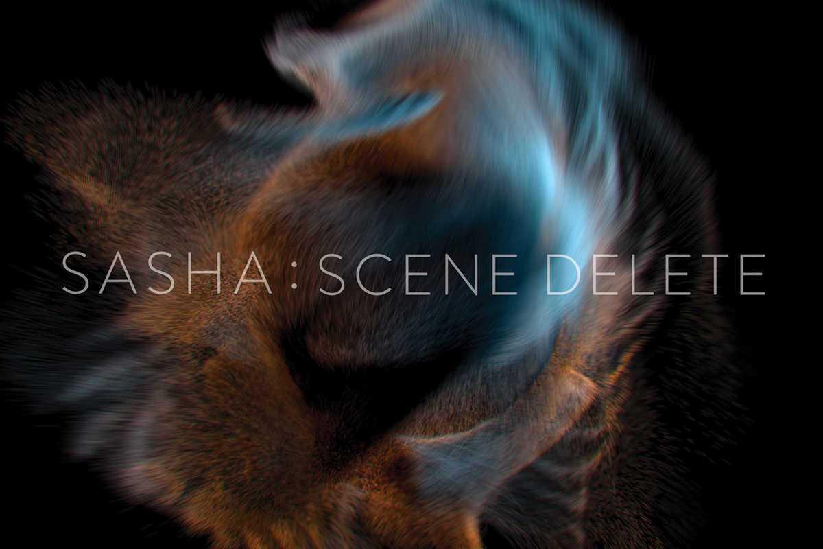 scene delete
