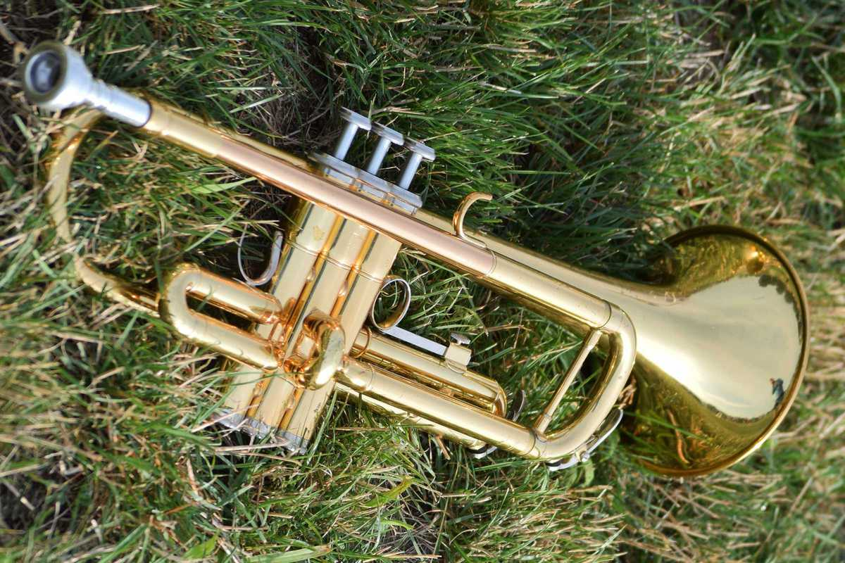 trumpet in grass